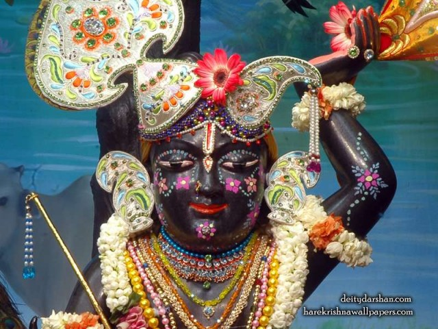 Sri Gopal Close up Wallpaper (046)