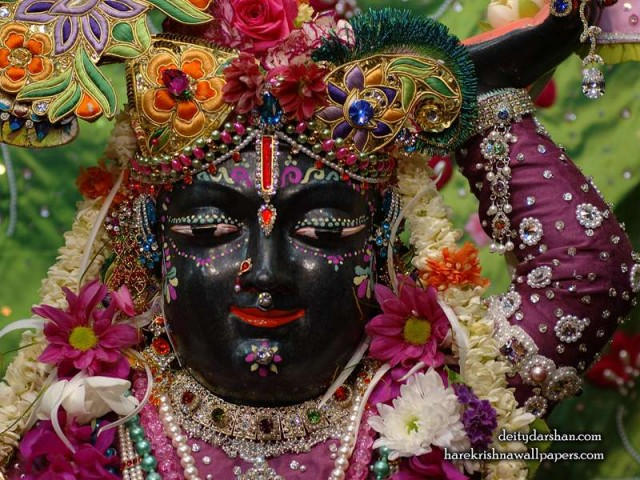 Sri Gopal Close up Wallpaper (047)