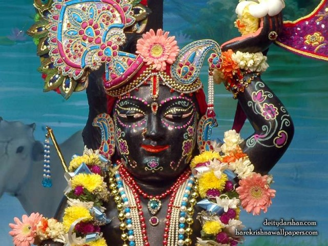 Sri Gopal Close up Wallpaper (048)