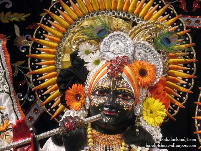 Sri Kalachanda Close up Wallpaper (007)