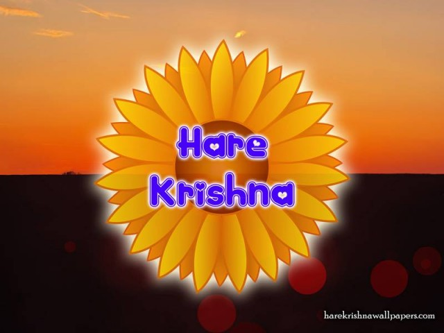 Hare Krishna Wallpaper (009)