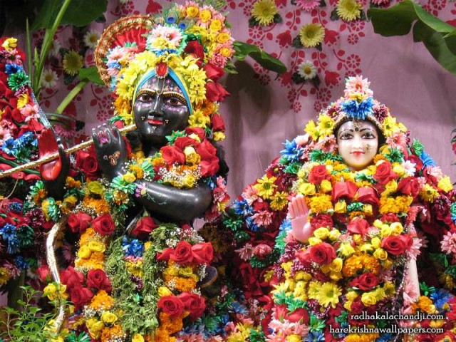 Sri Sri Radha Kalachanda Close up Wallpaper (001)