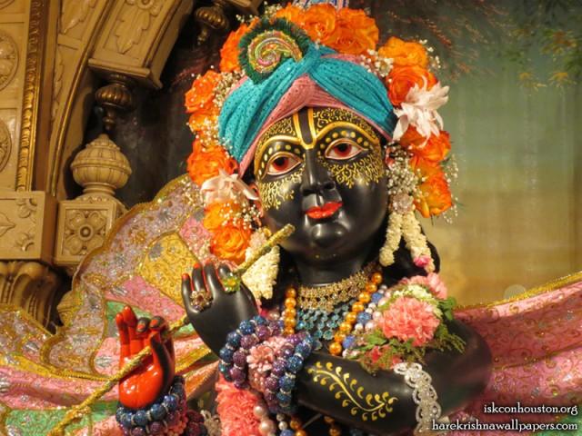 Sri Nilamadhava Close up Wallpaper (014)