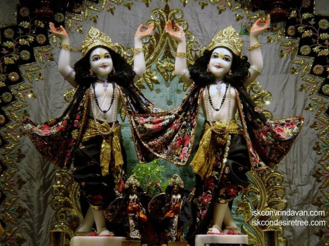 Sri Sri Gaura Nitai Wallpaper (083)