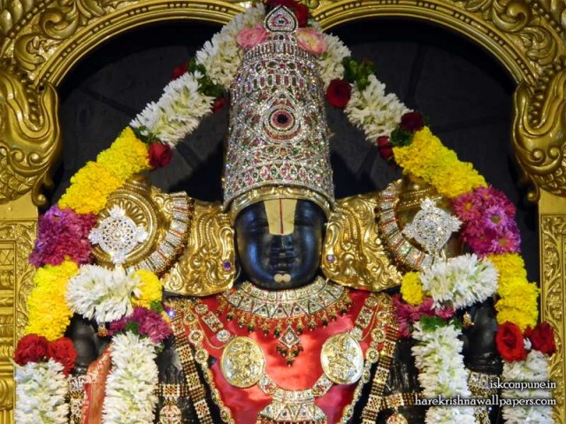 Sri Balaji Close up Wallpaper (007)