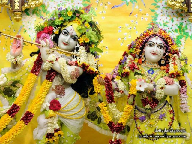 Sri Sri Radha Gopinath Close up Wallpaper (052)