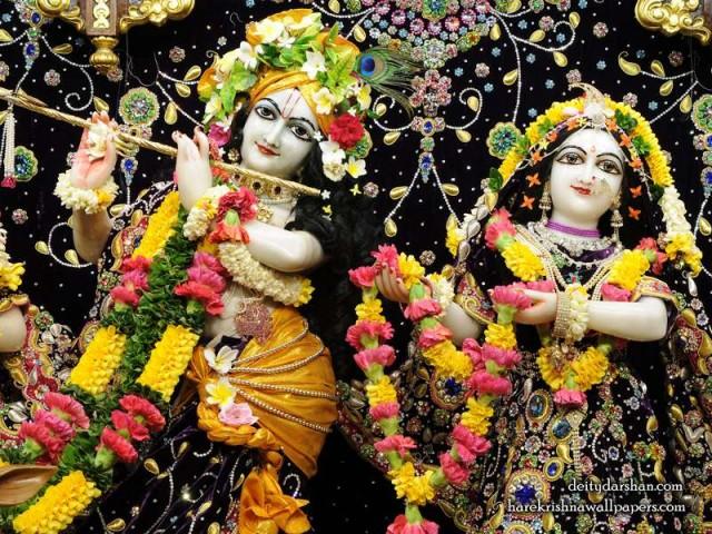 Sri Sri Radha Gopinath Close up Wallpaper (058)