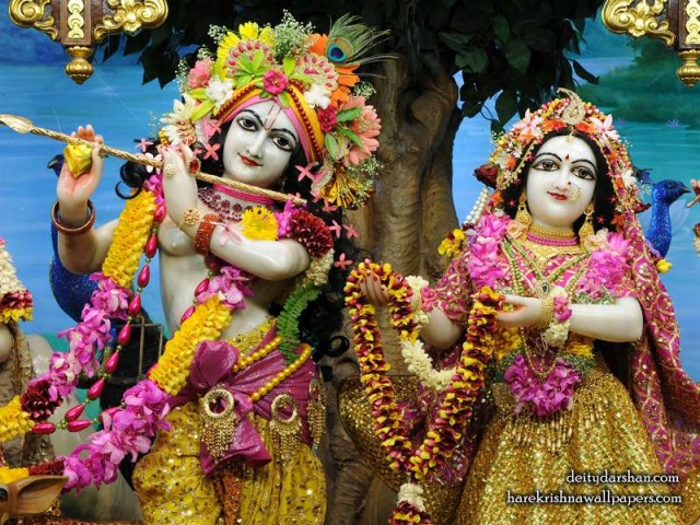 Sri Sri Radha Gopinath Close up Wallpaper (060)