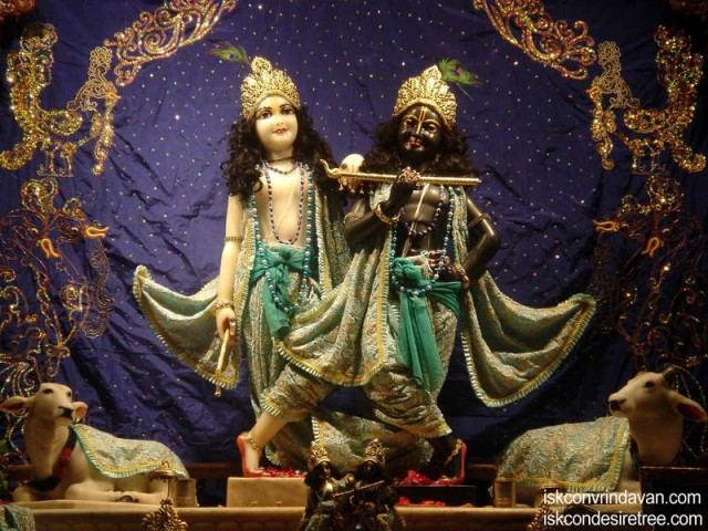 Sri Sri Krishna Balaram Wallpaper (101)