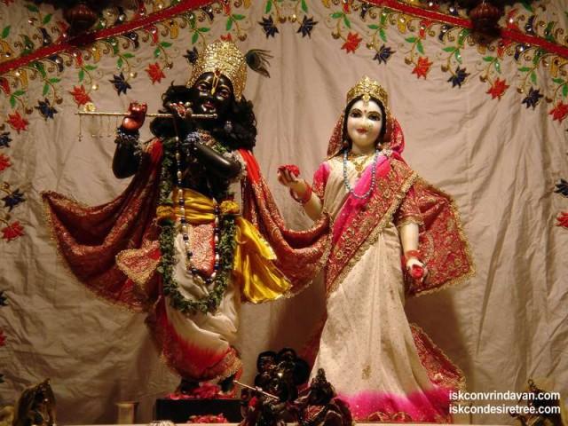 Sri Sri Radha Shyamsundar Wallpaper (003)