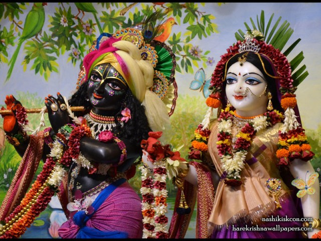 Sri Sri Radha Madan Gopal Close up Wallpaper (008)