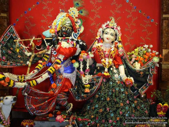 Sri Sri Radha Govind Wallpaper (042)