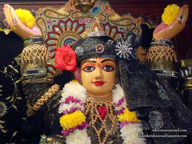 Sri Gaura Close up Wallpaper (001)