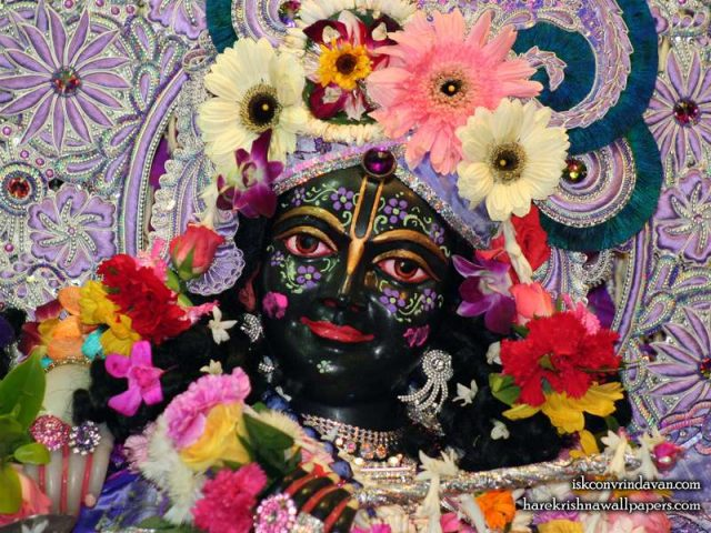 Sri Krishna Close up Wallpaper (001)