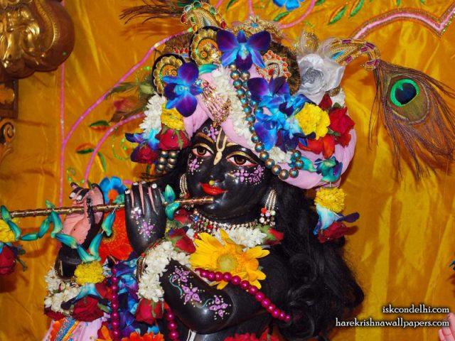 Sri Parthasarathi Close up Wallpaper (001)