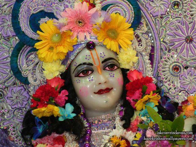 Sri Balaram Close up Wallpaper (002)