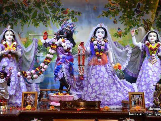 Sri Sri Radha Madan Gopal Lalita Vishakha Wallpaper (002) Size 1440×900 Download