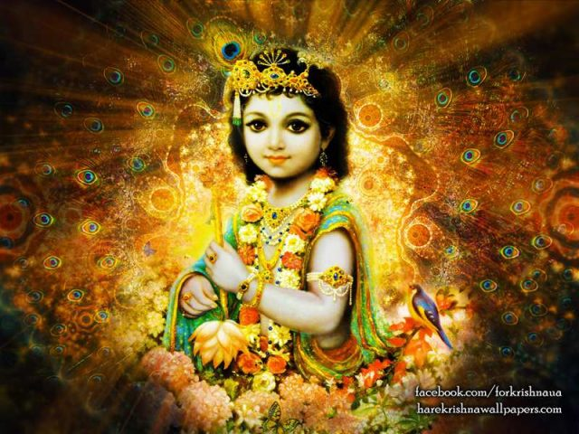 Krishna Wallpaper (004)