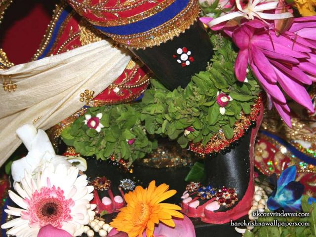 Sri Shyamsundar Feet Wallpaper (004)
