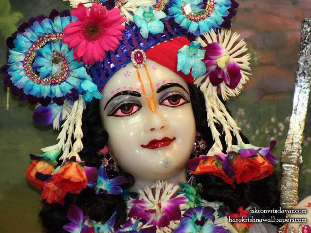 Sri Balaram Close up Wallpaper (005)