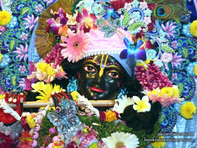 Sri Shyamsundar Close up Wallpaper (006)