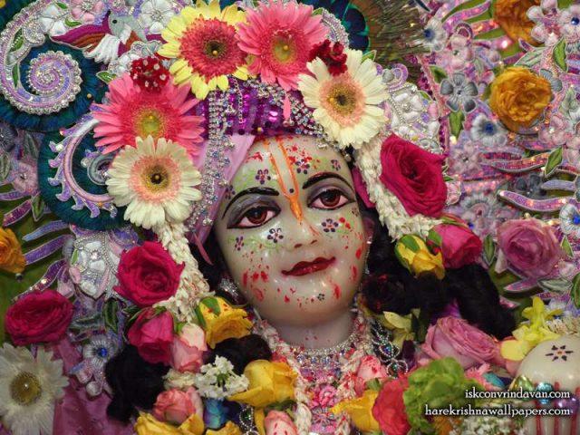 Sri Balaram Close up Wallpaper (007)