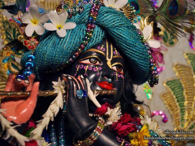Sri Parthasarathi Close up Wallpaper (008)