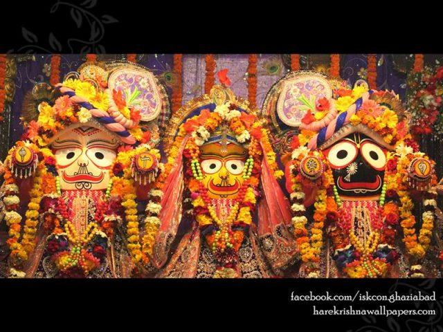 Jagannath Baladeva Subhadra Wallpaper (009)