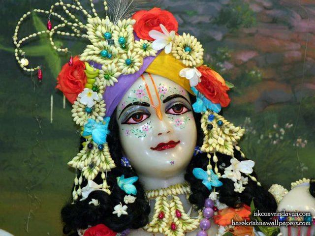 Sri Balaram Close up Wallpaper (009)