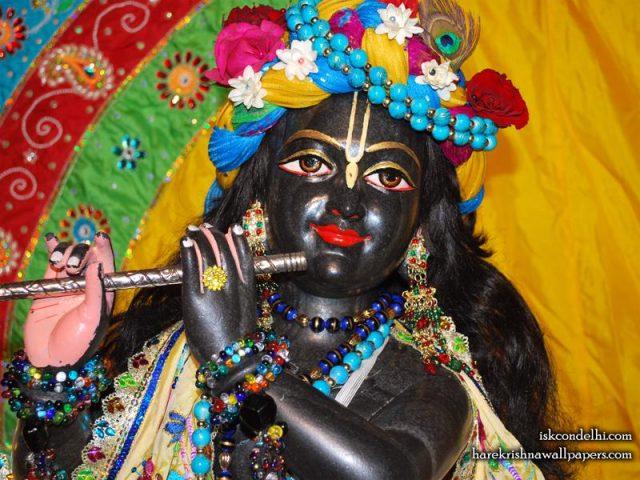 Sri Parthasarathi Close up Wallpaper (009)