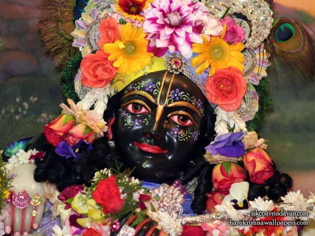 Sri Krishna Close up Wallpaper (012)