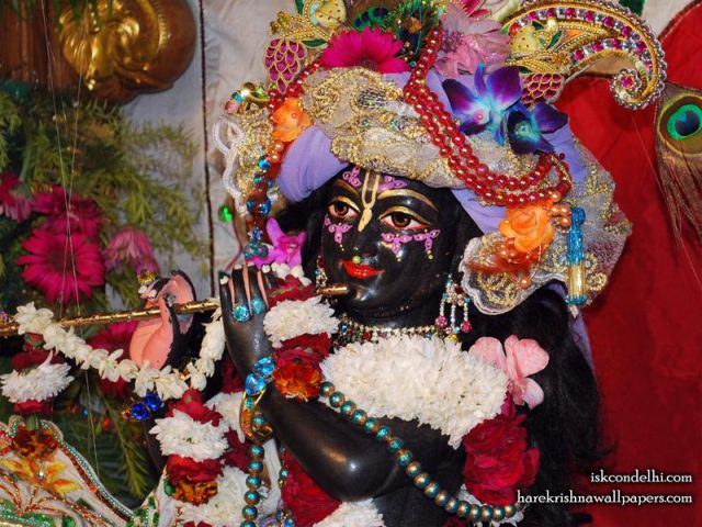 Sri Parthasarathi Close up Wallpaper (012)