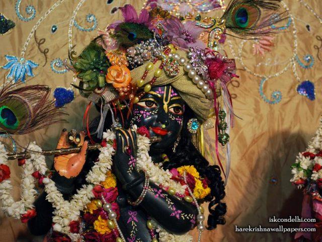 Sri Parthasarathi Close up Wallpaper (013)