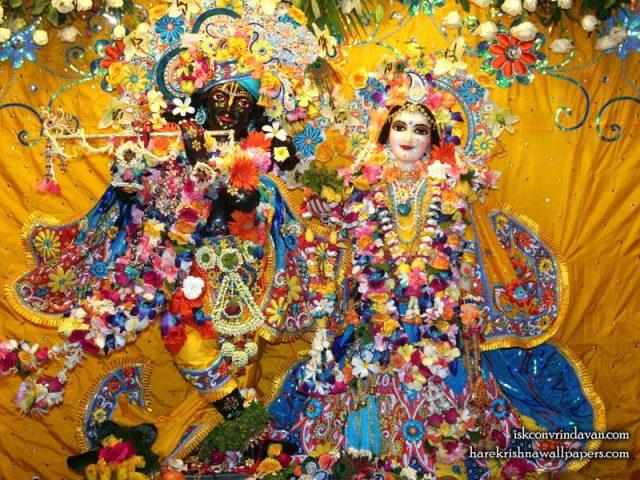 Sri Sri Radha Shyamsundar Wallpaper (013)