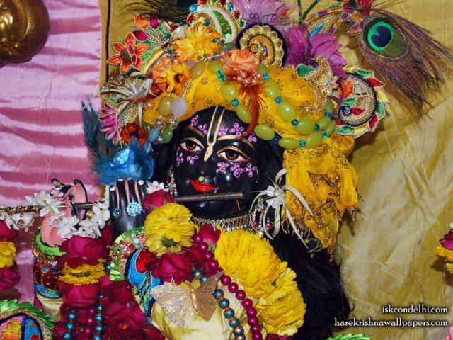 Sri Parthasarathi Close up Wallpaper (014)