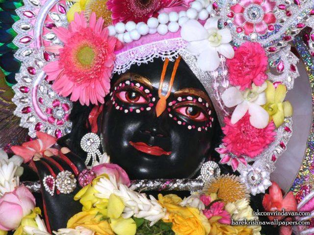 Sri Shyamsundar Close up Wallpaper (014)