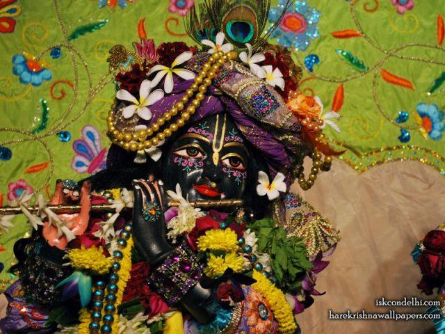 Sri Parthasarathi Close up Wallpaper (015)