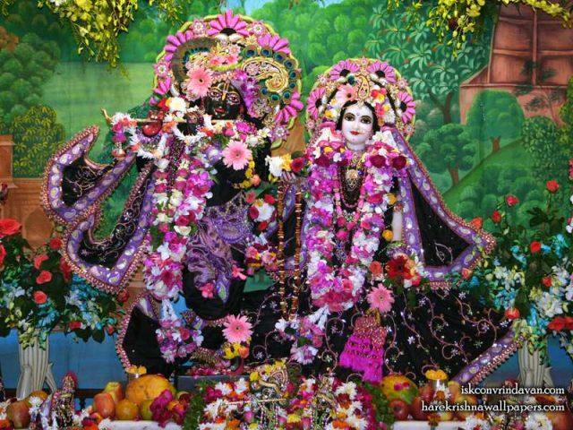 Sri Sri Radha Shyamsundar Wallpaper (016)