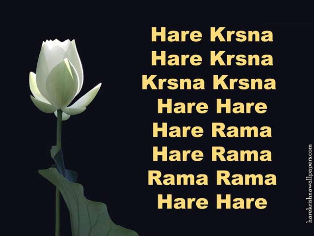 Chant Hare Krishna Mahamantra Wallpaper (025)