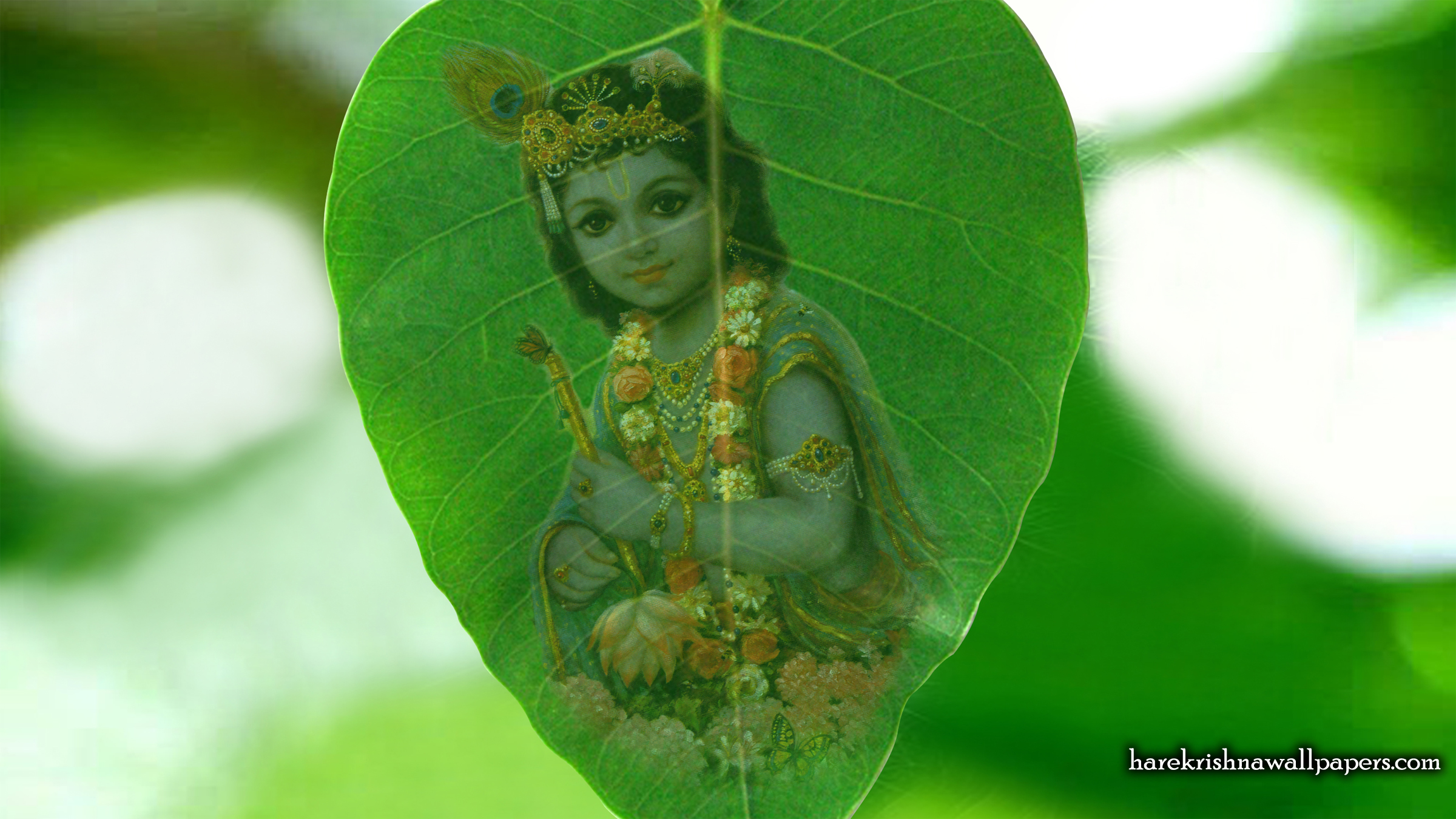 Krishna Wallpaper (038) Size 2400x1350 Download