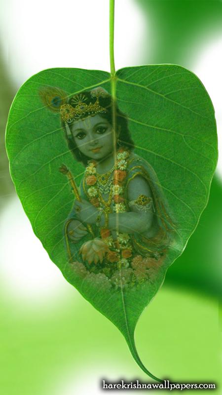 Krishna Wallpaper (038) Size 450x800 Download