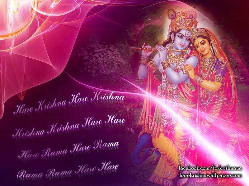Radha Krishna Wallpaper (013)