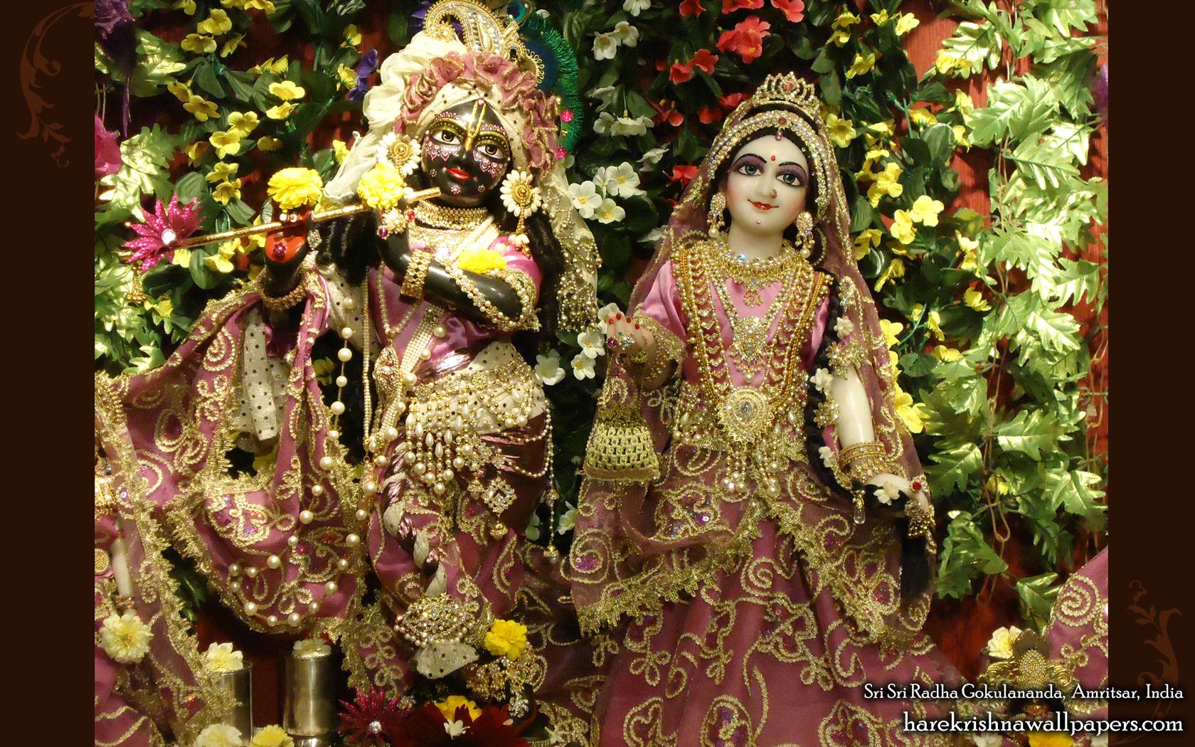 Sri Sri Radha Gokulananda Wallpaper (003) Size 1680x1050 Download