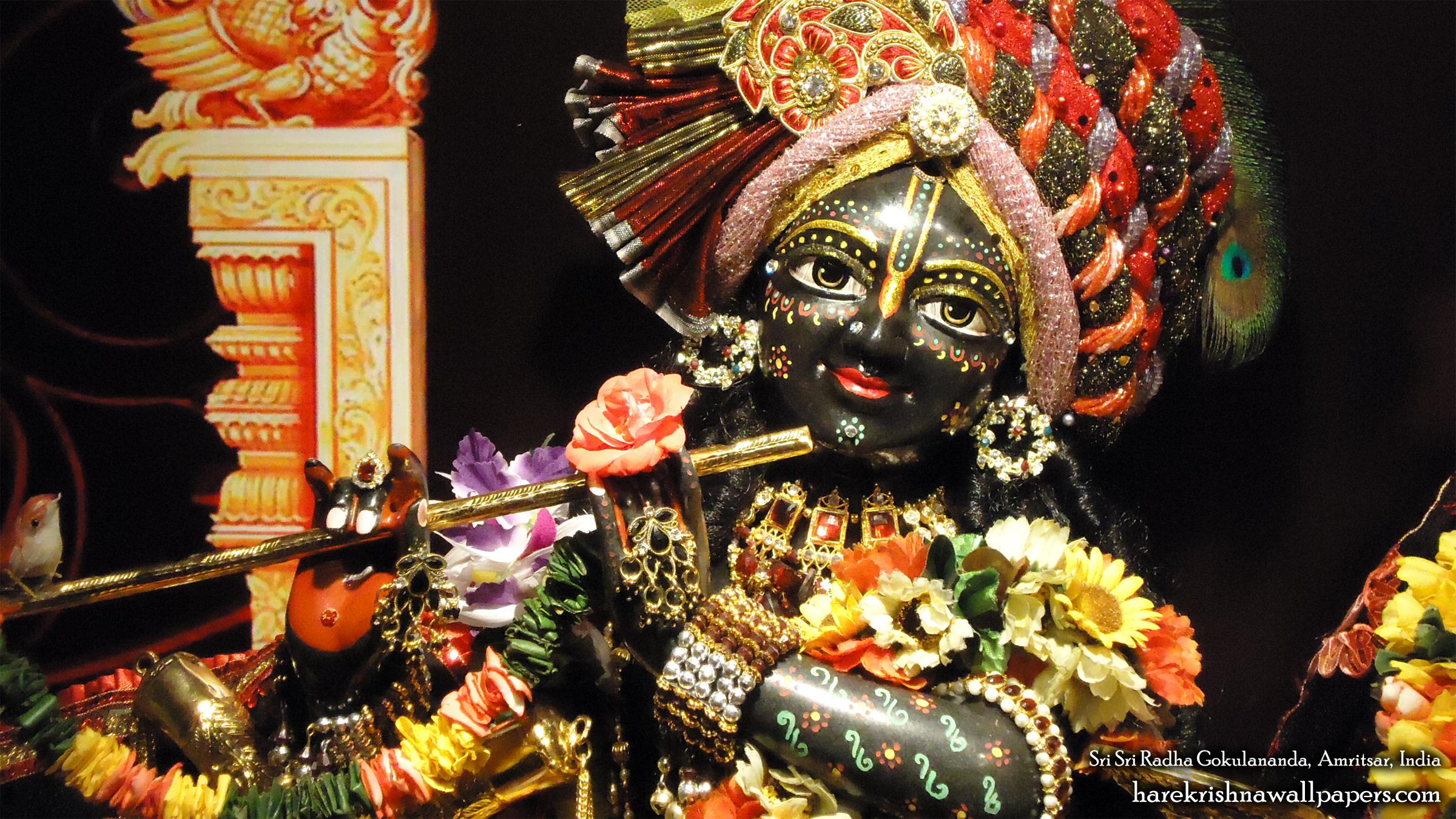 Sri Gokulananda Close up Wallpaper (011) Size 2400x1350 Download