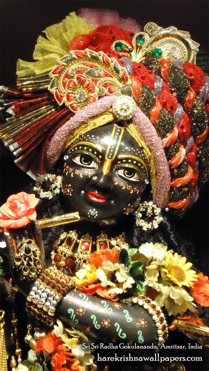 Sri Gokulananda Close up Wallpaper (011) Size 675x1200 Download