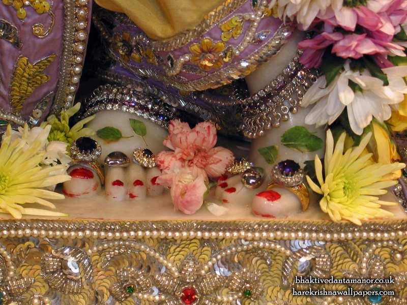 Sri Gokulananda Feet Wallpaper (001)