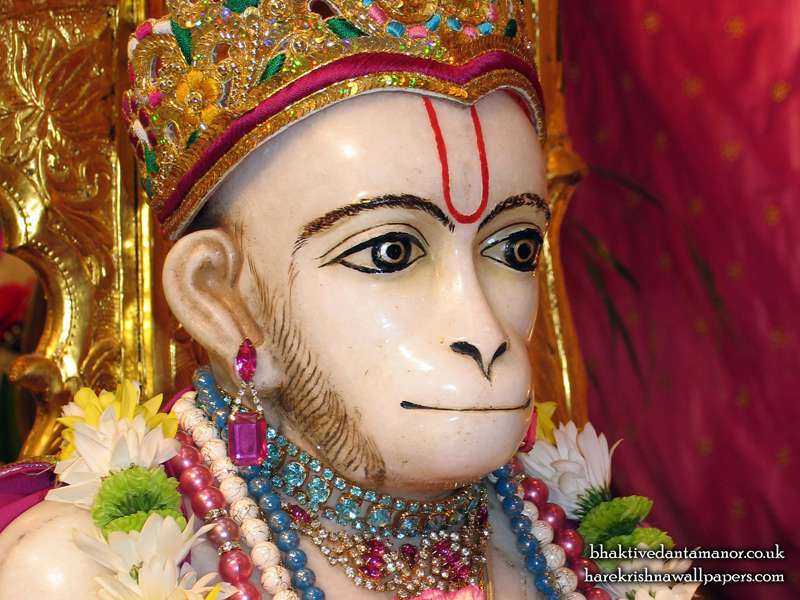 Sri Hanuman Close up Wallpaper (001)