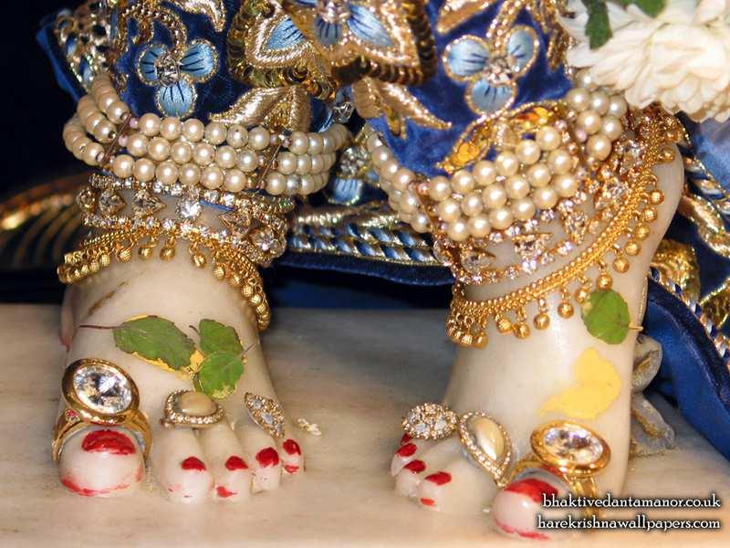 Sri Gokulananda Feet Wallpaper (004)