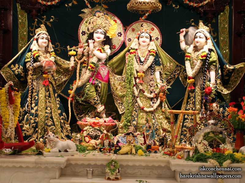 Wallpapers Of Sri Sri Radha Krishna Lalita Vishakha Iskcon Chennai