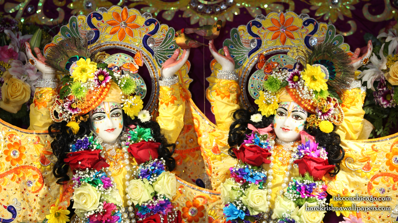 Sri Sri Gaura Nitai Close up Wallpaper (003) Size 1600x900 Download